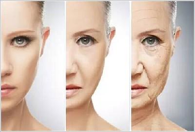 四十岁的女人怎样过上那么美,那么精致的生活