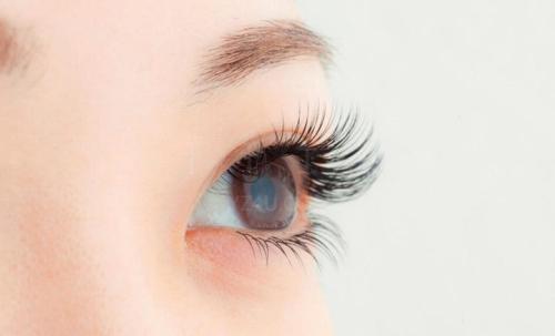 【精品解读】嫁接睫毛和睫毛种植哪个好