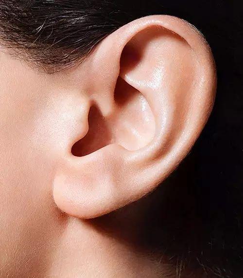 锦州富来幕耳垂再造能解决的耳垂问题是什么