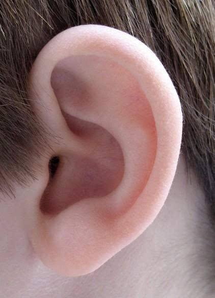 西安俪时代副耳切除的注意事项有哪些