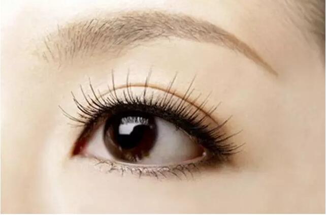 【精品解读】种植睫毛和嫁接睫毛有什么区别