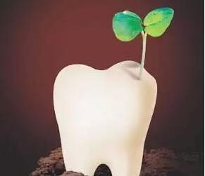 南寧種植牙疼嗎