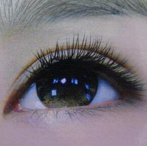 FUT植发技术睫毛种植