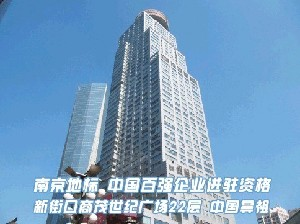 中國鼻祖南京定制中心