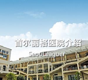 上海首爾麗格醫療美容醫院
